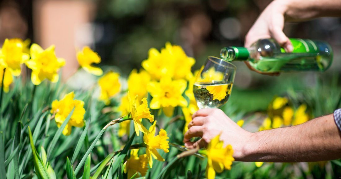 Botanical Garden Spring celebration